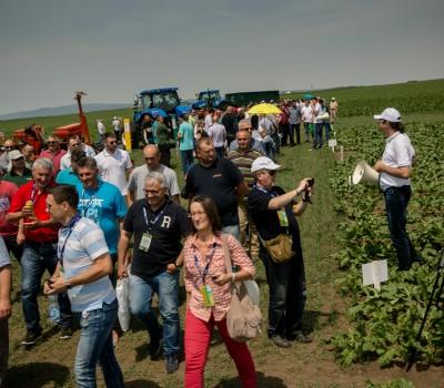 Dan polja šećerne repe