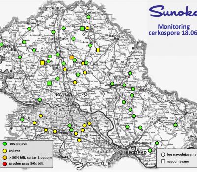 Monitoring cerkospore