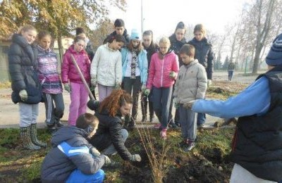 SUNOKO sponsored campaign of planting trees in Vrbas