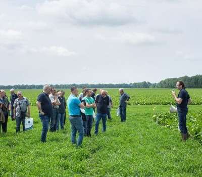 SUGAR BEET FIELD DAY